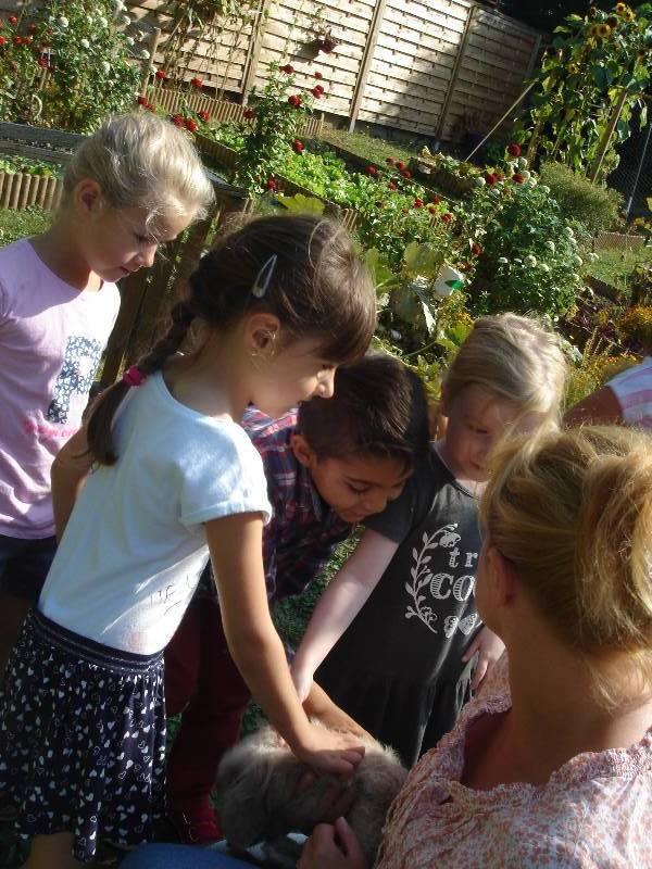 Ecole maternelle jean pierre florian boulogne sur mer for Au jardin de jean pierre inc